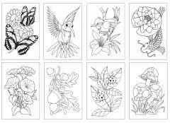 Chameleon Boyama Kartları