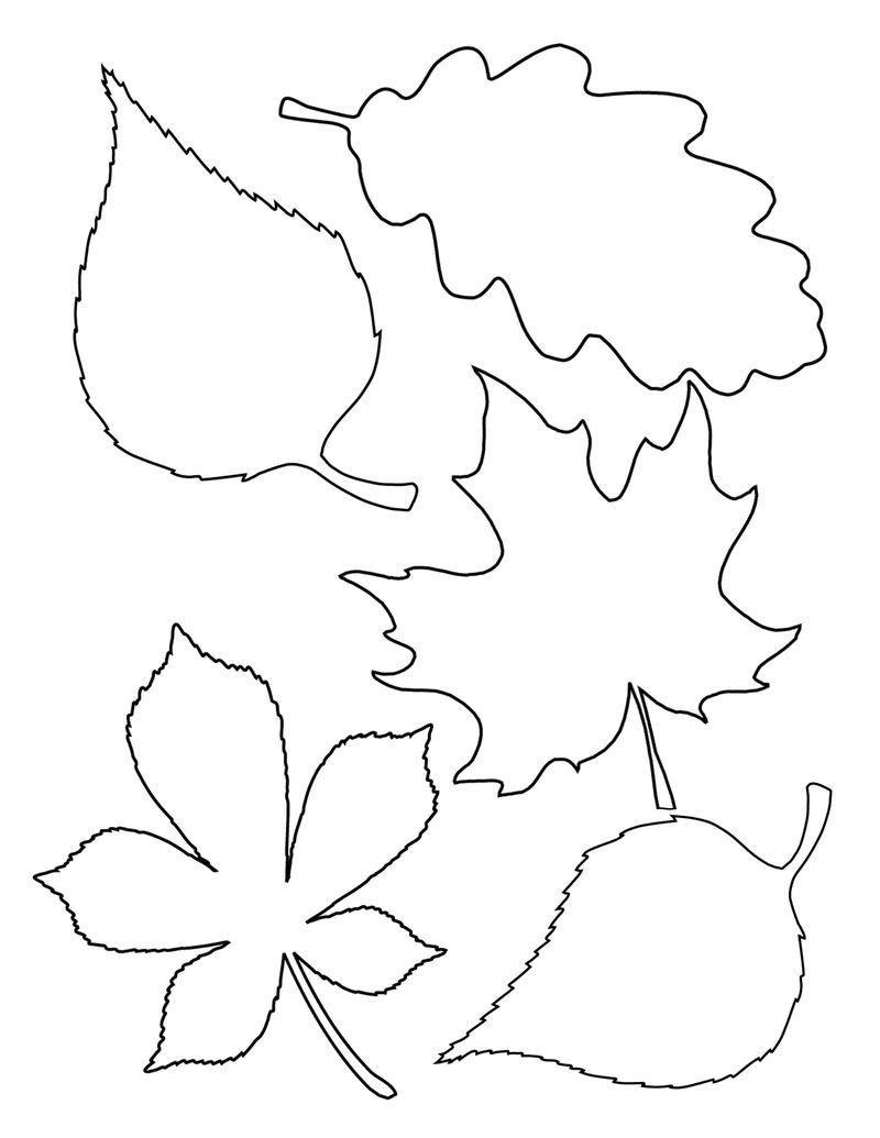 Sonbahar Yaprak Kalıpları
