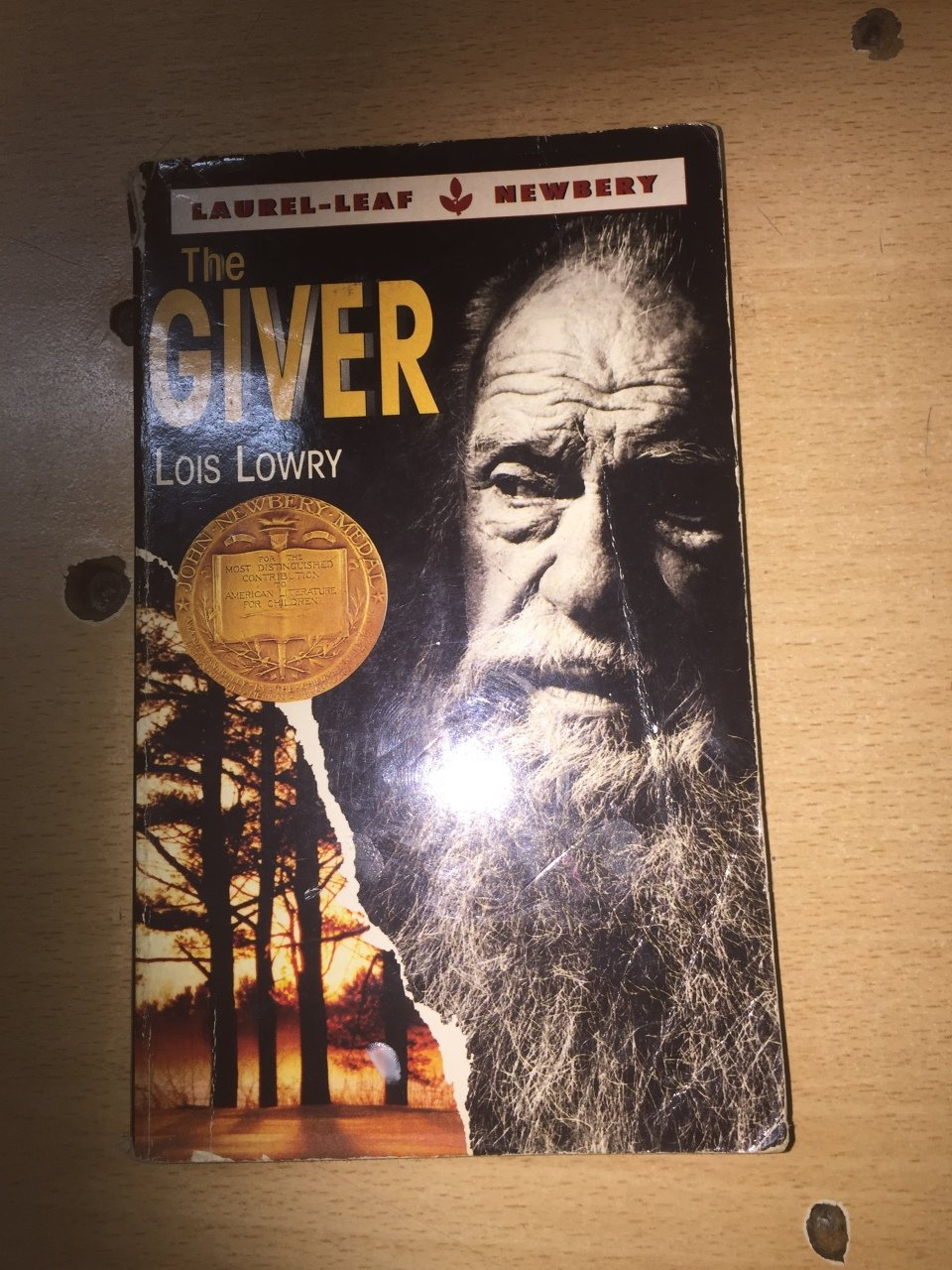 the bad and the good things in the giver by lois lowry I also like that this novel conveys the fact that life isn't worth living without the good and the bad that you can't have the good without the bad  the giver by lois lowry  and it was probably because our teacher loved it too she was so excited about it in fact, our teacher loved lois lowry so much that we read her book number.